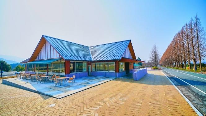 メタセコイアカフェ建築工事